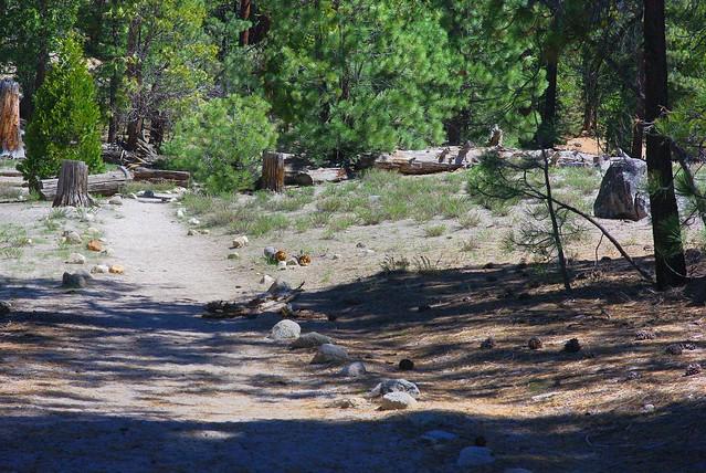Little Yosemite Valley Trail, Yosemite
