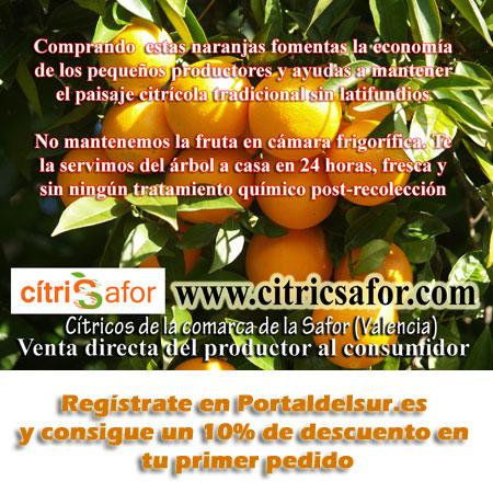 citricsafor