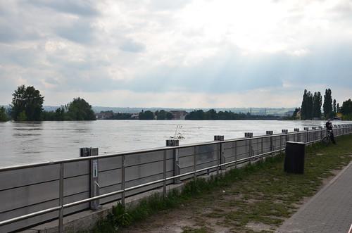 9024736968 f313376367 Elbehochwasser   Juni 2013