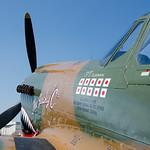 NX1232N - Curtiss-Wright - P40 Warhawk