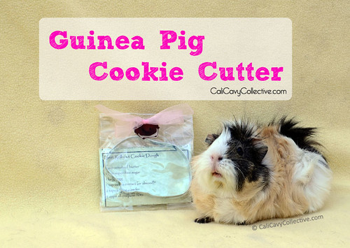 Poof with guinea pig cookie cutter