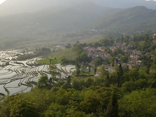 Yunnan13-Yuanyang 1-Duoyishu (114)