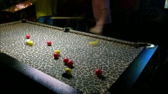 Leopard Pool