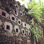 Image of Viejo San Juan near San Juan. square oldsanjuan puertorico pigeons squareformat rise viejosanjuan iphoneography instagramapp uploaded:by=instagram foursquare:venue=4c2655b2136d20a1142be561