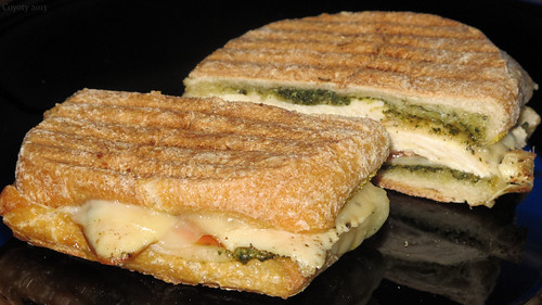 Grilled chicken pesto panini on ciabatta roll by Coyoty