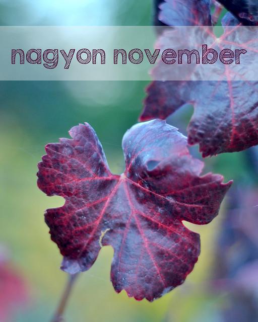 nagyon-november