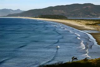 Ocean curve