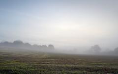 September morn - Flatford