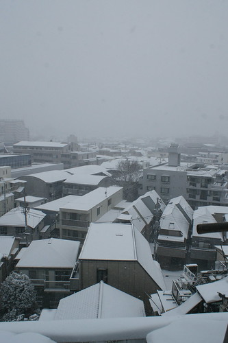 Shinjuku in the Blizzard