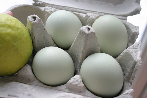 valentine eggs 031