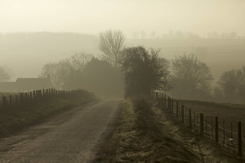 road morning trees winter mist fog sunrise fence day lane buckingham