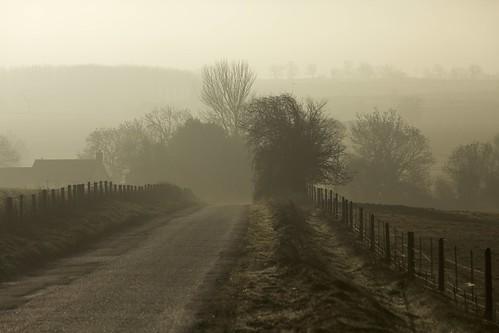 road morning trees winter mist fog sunrise fence day lane buckingham