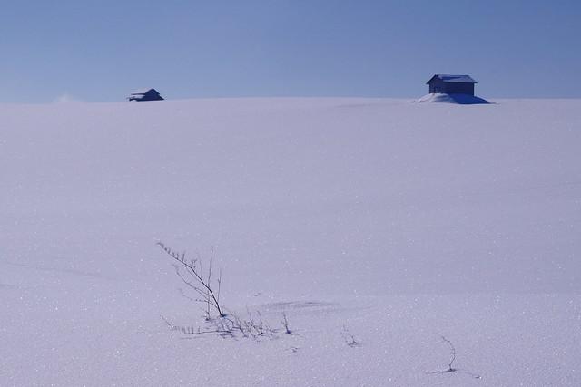 kirakiraの丘