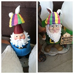 Mom: Put this hat on the porch gnome. Me: Done! Mom: The other porch gnome!