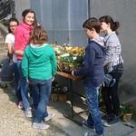 i banchetti dei fiori