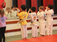 individual sports, contact sport, sports, combat sport, martial arts, japanese martial arts,