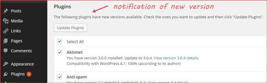 upgrade_wordpress_8
