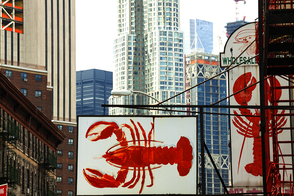 Images of lobsters--Chinatown