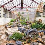 Image of Jardín botánico de Cienfuegos near Cienfuegos.