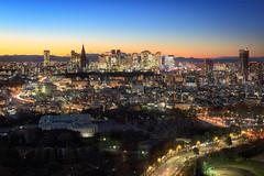 Tokyo Cityscape 9098