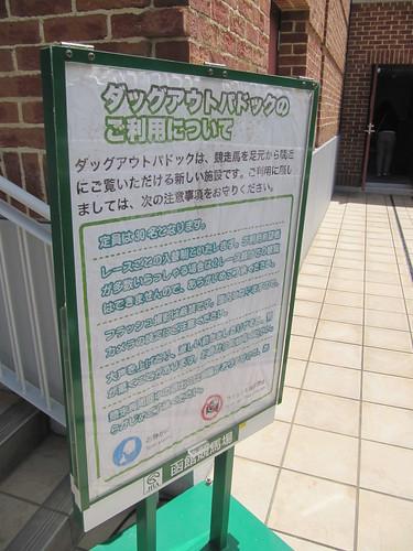 函館競馬場のダッグアウトパドック利用上の注意