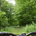 Bicycling on the McGee Trail