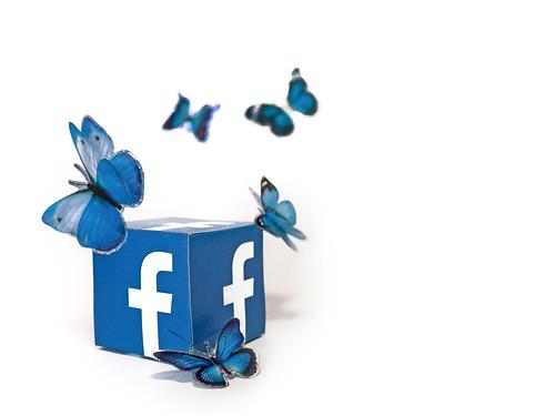 Social Media Butterfly - Facebook
