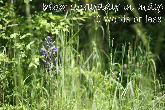 10words