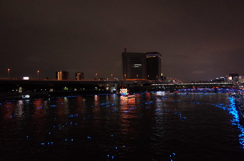 Tokyo Hotaru Light Symphony 2013-28