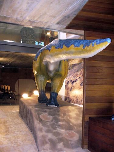 Reconstrucción de Arenysaurus (3)