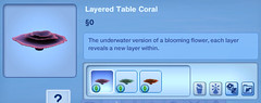 Layered Table Coral