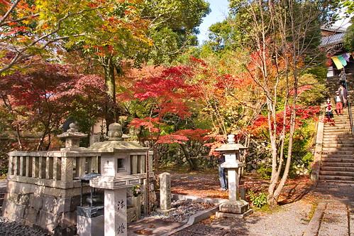 【写真】2012 紅葉 : 光明寺/2020-11-11/IMGP6510