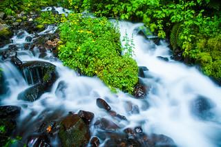 Lower Wahkeena Falls