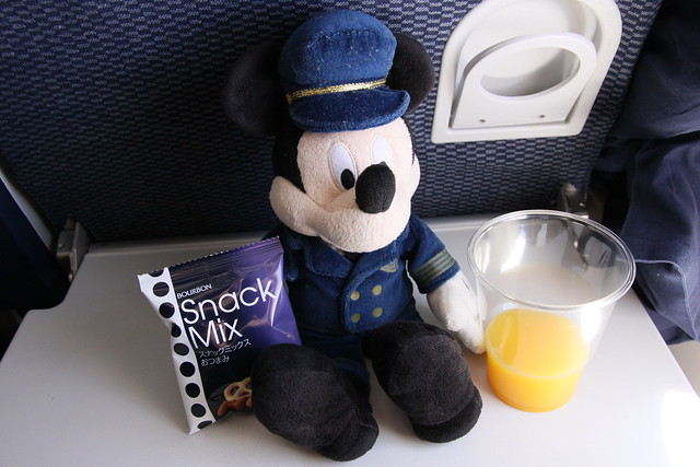 Captain Mickey on ANA