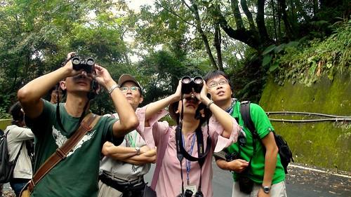 公民科學家協助累積調查數據,是科學研究中重要的內涵。圖片來源:BBS Taiwan