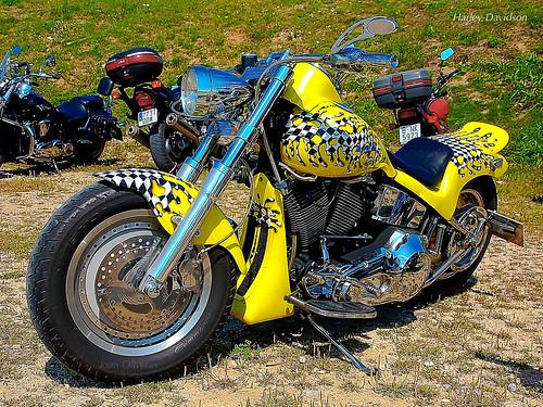 Harley-Davidson groga