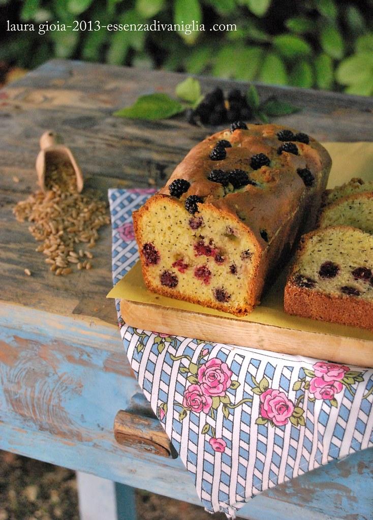 cake di kamut con more e semi di papavero copy