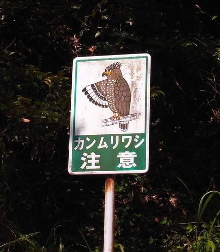 石垣島提醒注意蛇鵰路牌。(圖片攝影:曾建偉)