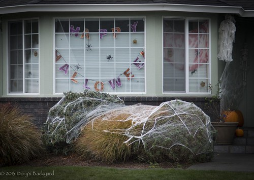 20131021_FallDecoratedHouses