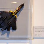 VF-22 シュトュルムフォーゲルII ガムリン専用機