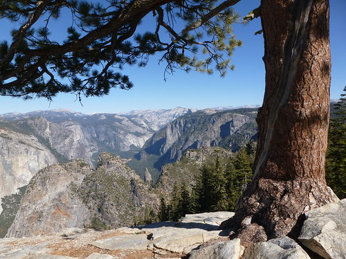 Views from Dewey Point, Yosemite National Park, California. Courtesy of mellow cat