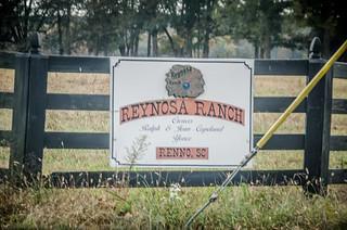 Reynosa Ranch