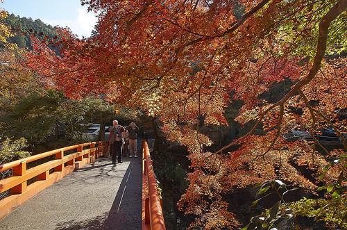 【写真】紅葉 : 西明寺