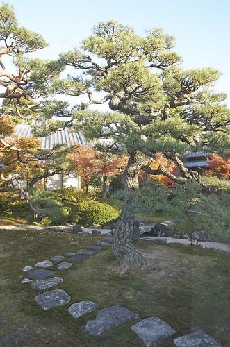 【写真】2013 紅葉 : 妙顕寺/2020-11-01/IMGP4163