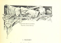 "British Library digitised image from page 511 of ""A magyar nemzet tortenete. Szerkeszti Szilágyi S [With maps and illustrations.]"""