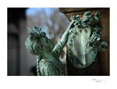 Gustave Jundt (Cimitière du Montparnasse) (Cindo Paris Series 52-5mm  f=85mm  f2-2 on Nikon D800) 3