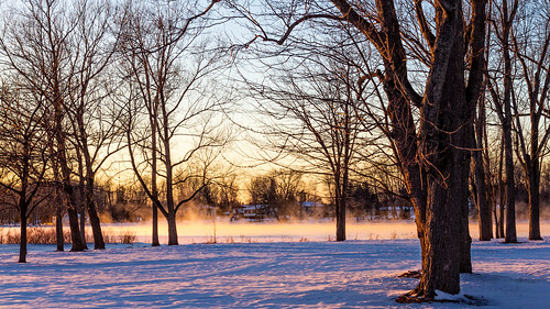 winter mist snow mississippiriver riversidepark carletonplace 100xthe2014edition 100x2014 image10100