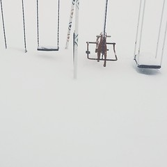 We measure snow by the creepy goat swing.