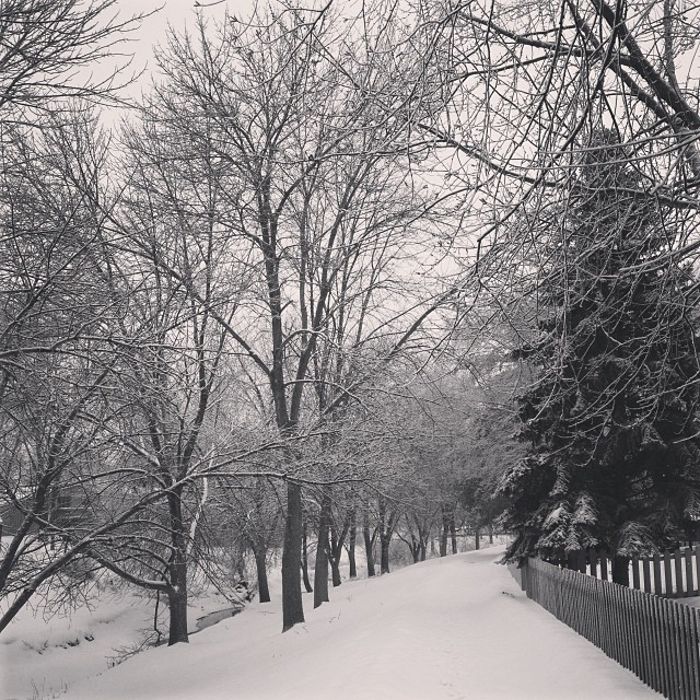 The Running Trail #snow #snowglobe