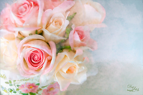 Image of some light pink and yellow roses